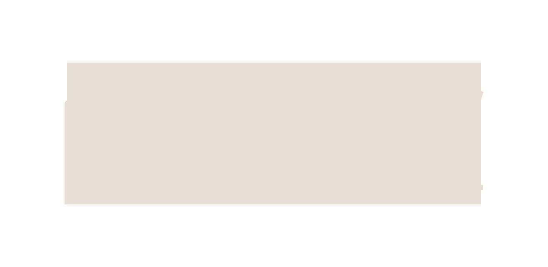 Leader Inside