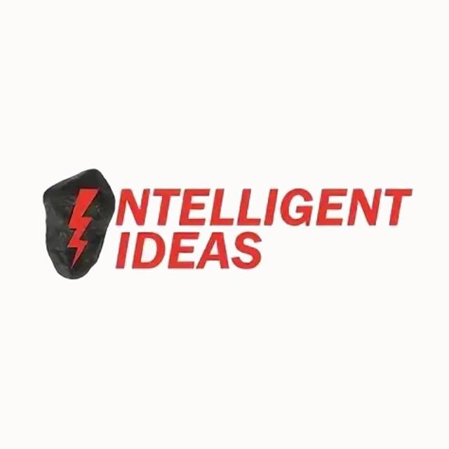 li-case-intelligent-ideas-640x640-1
